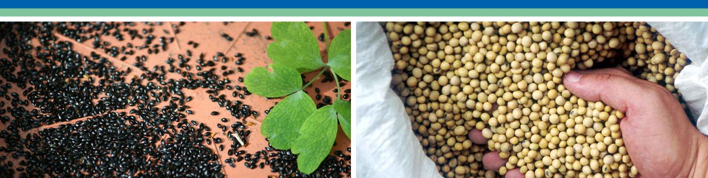 seed enkhuizen zaden bewaren